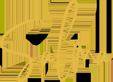 Salma's Recipes – Step by Step Recipes